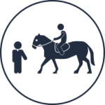 Horse Riding Lessons Chichester